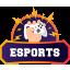 logo-vlix-esport